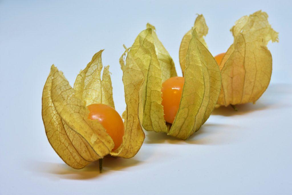 Что такое Физалис, плод упакованный природой