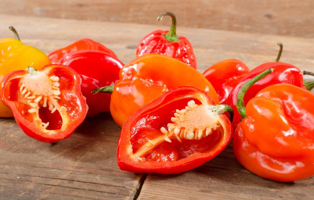 Болгарский перец – цветное витаминное чудо